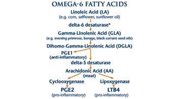 omega-6 fatty acid