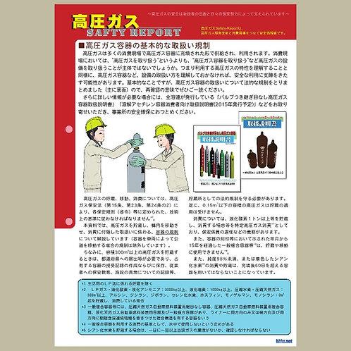 セーフティーレポート(容器の規制)20pcs