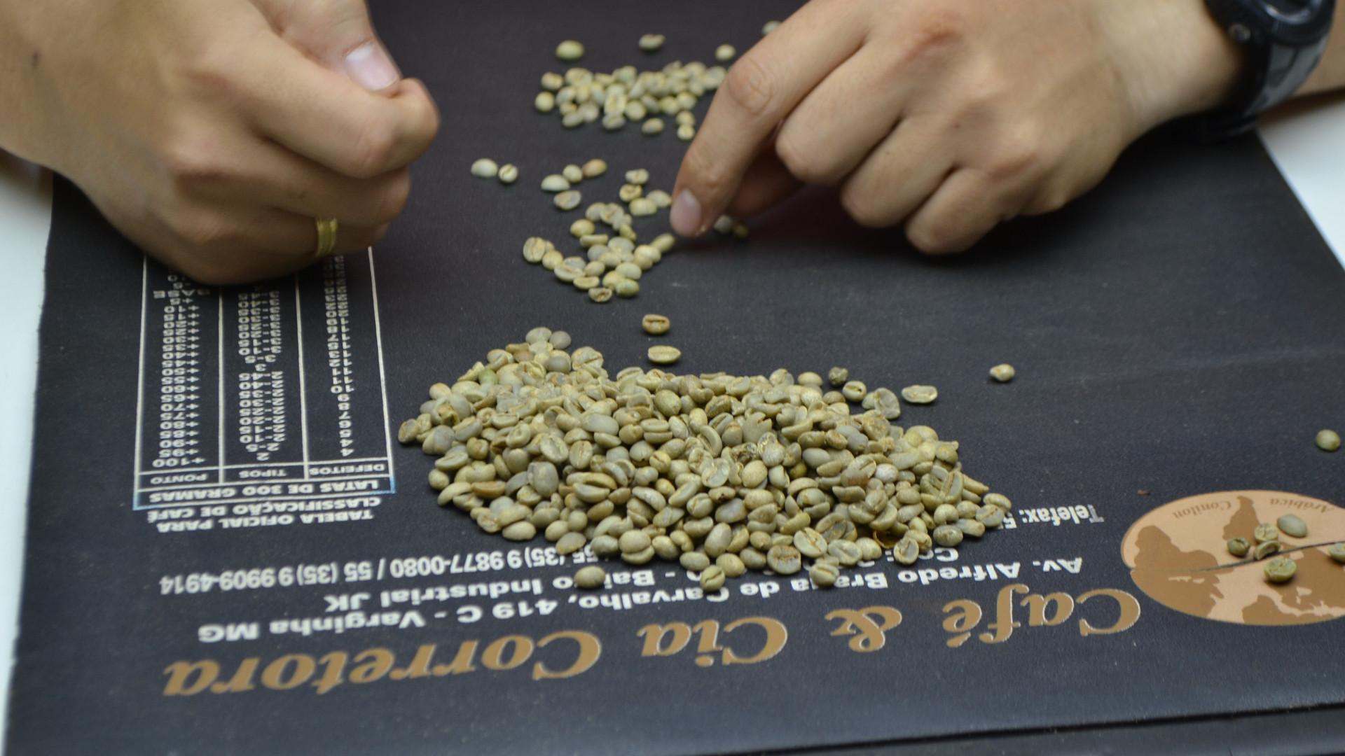 Coffee Grading.jpg