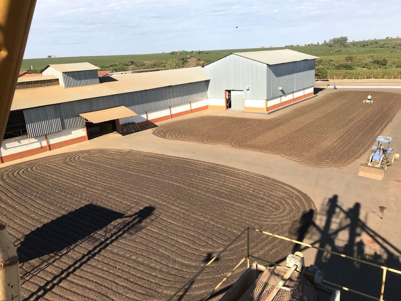 Drying Farm.jpg