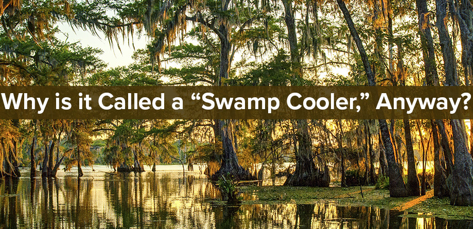 """Why is it Called a """"Swamp Cooler,"""" Anyway?"""