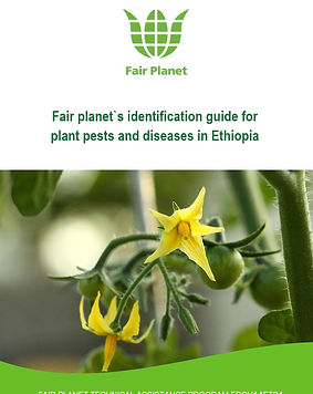 Fair Planet pest and disease identificat