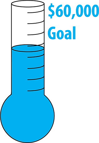 DSF 60000 goal image-11.png