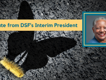 Update from DSF's Interim President