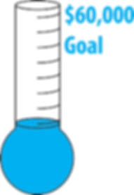 DSF 60000 goal-2.png