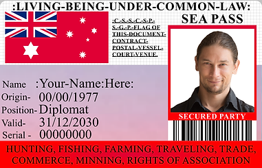 00000 aussie example card.png