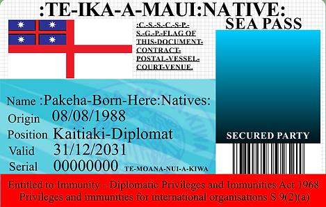 0000 NATIVE PROMO CARD no pic.png