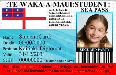 0000 student SEA PASS.png