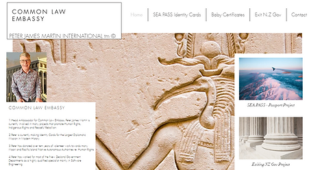 common law embassy promo vid screenshot of website.png