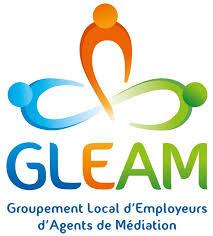Association GLEAM recrute un.e directeur.trice