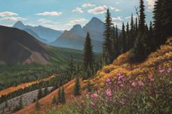 Alpine Daydreams
