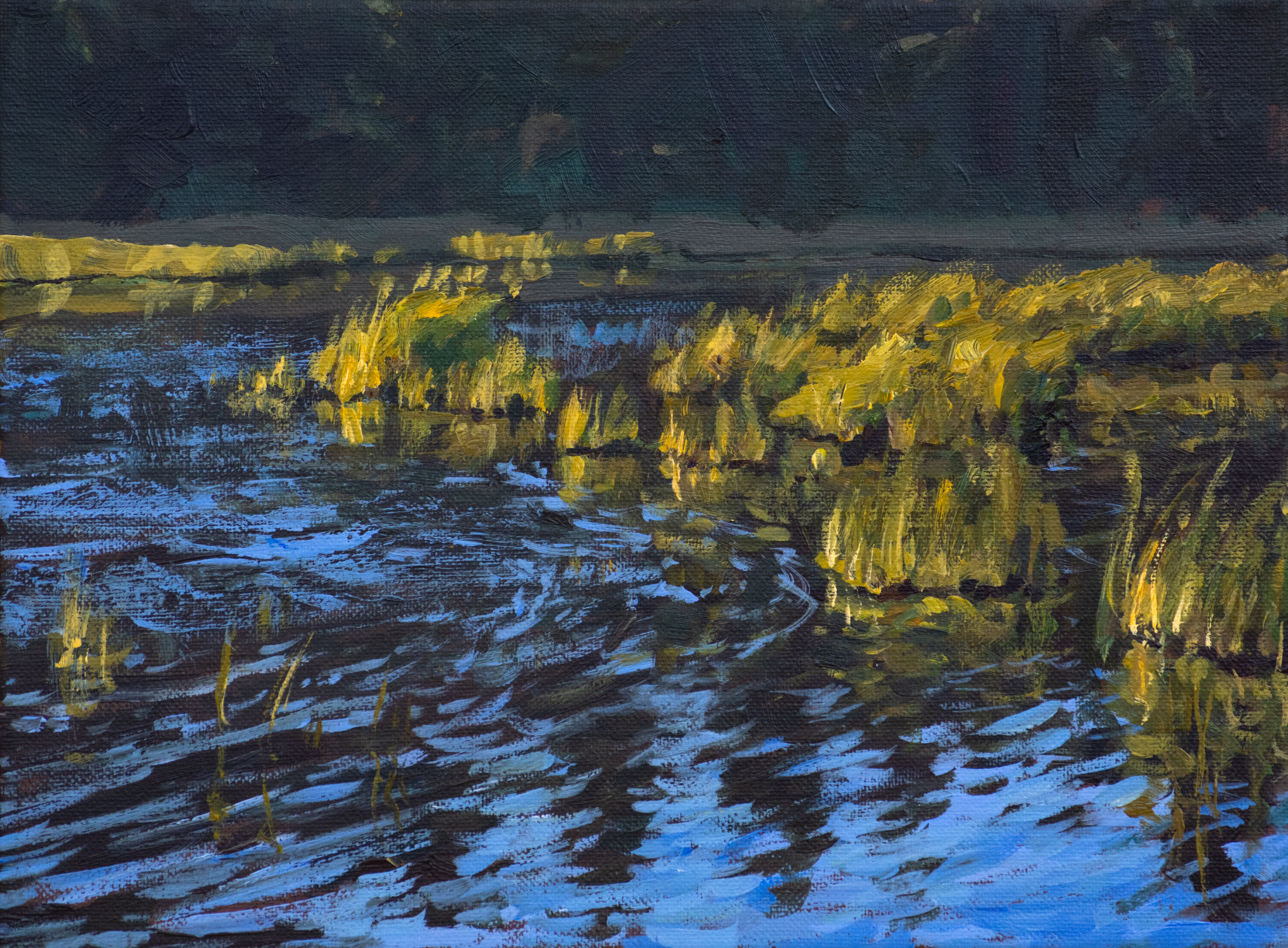 Glowing Marshland