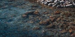 Niles Creek Glistens