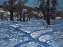 Bottomlands Snow Tracks