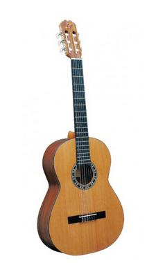 """Guitarra """"ADMIRA"""" Irene"""