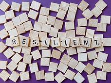 resilient-4899506_1920.jpg