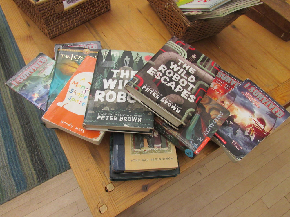 Pile of Popular books