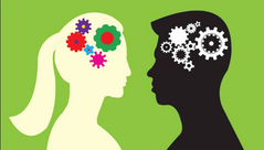 Men and Women: Are Their Brains Actually Different?