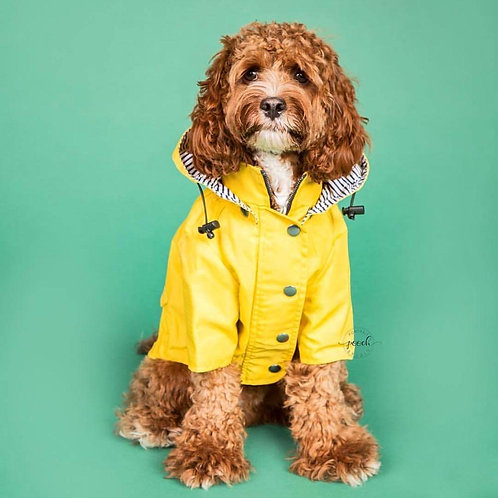 Yellow Dog Windcheater Rain Waterproof Outdoor Jacket
