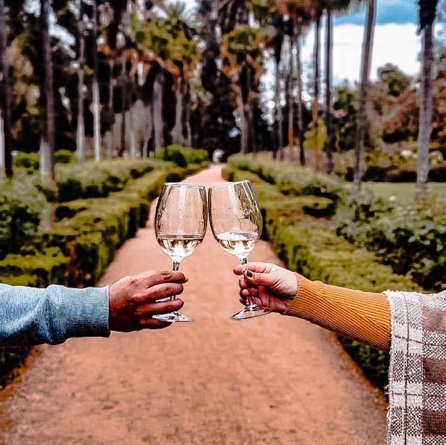 Brinde na vinícola Undurraga