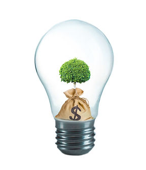 Green eco energy concept. Tree growing i