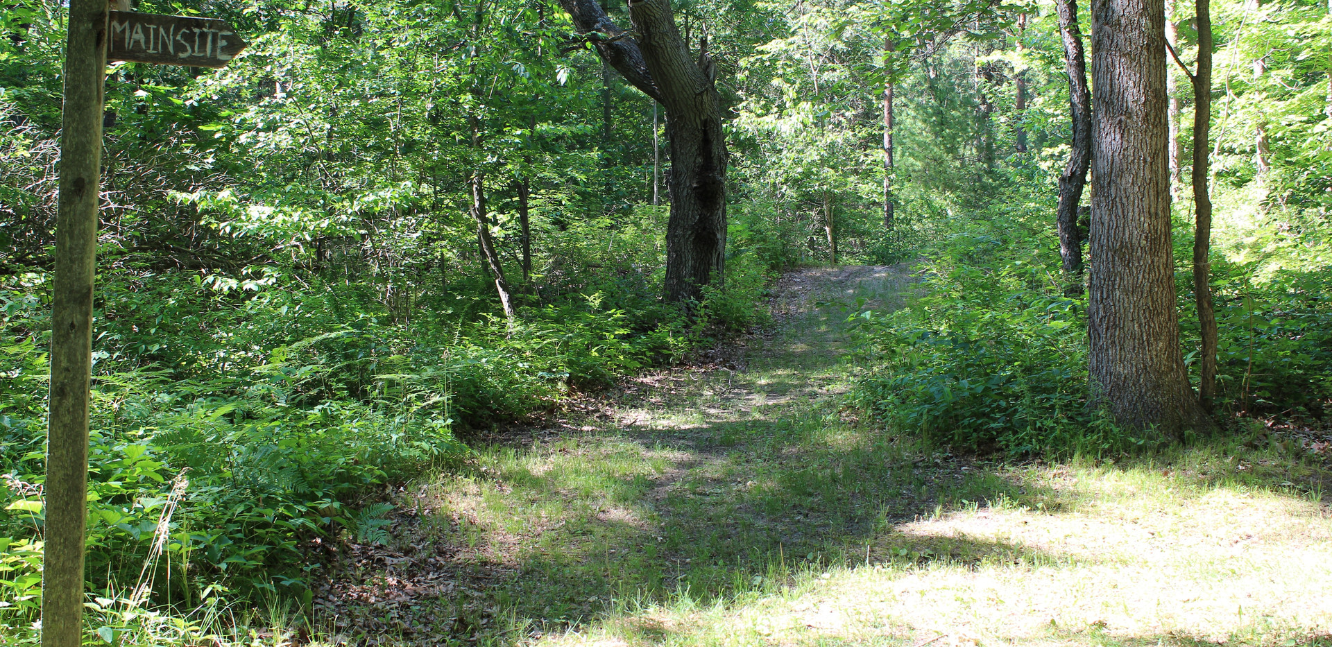 More Trails