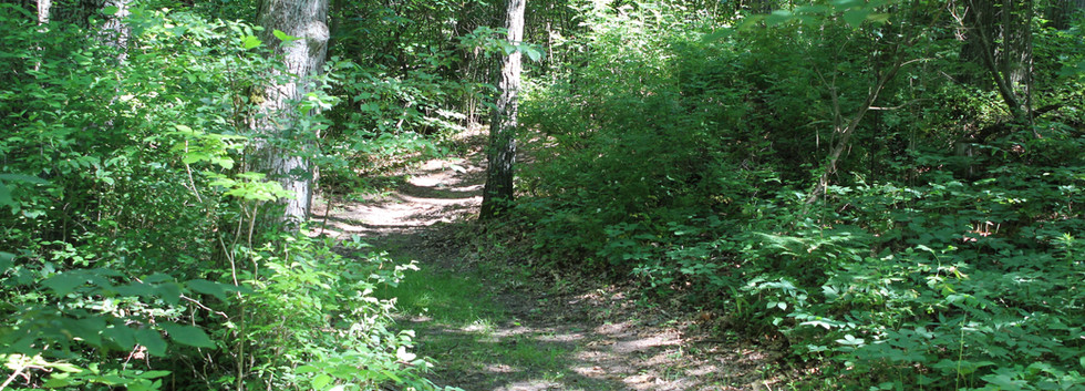 The Trail to Site 3