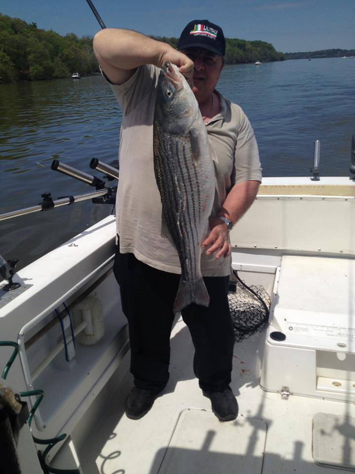 Hudson River Striper - May 2015