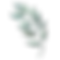 BRANCH png.png