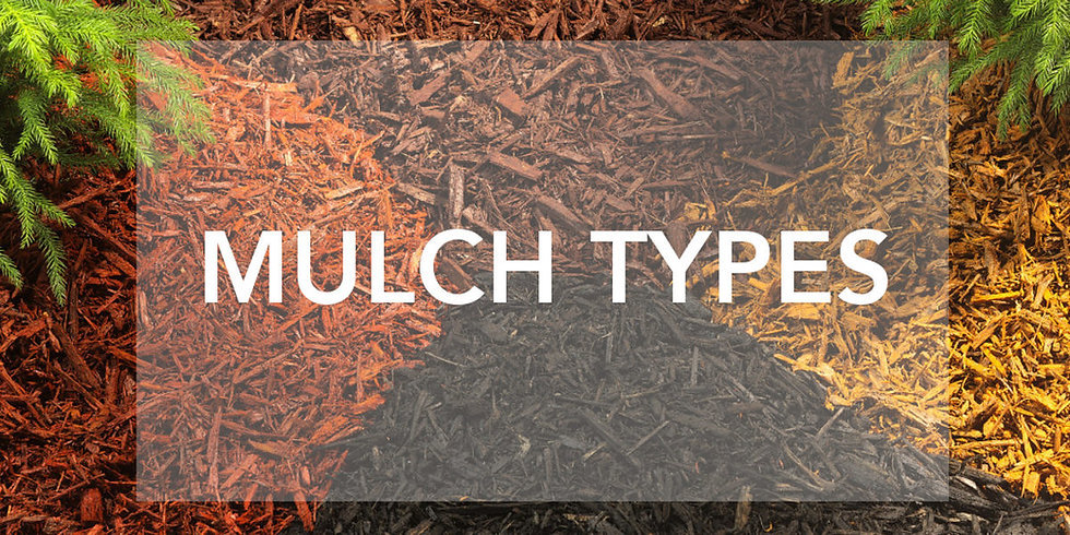 mulch-types.jpg