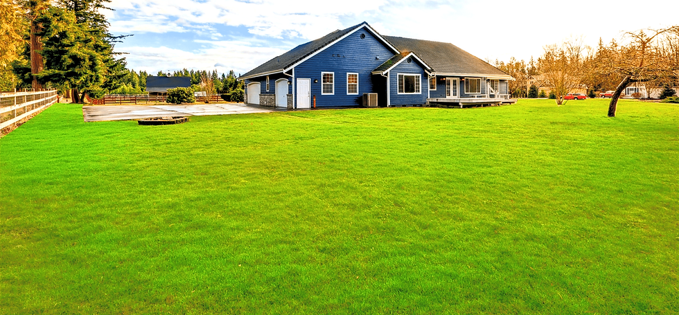 BLue house green grass (1).png