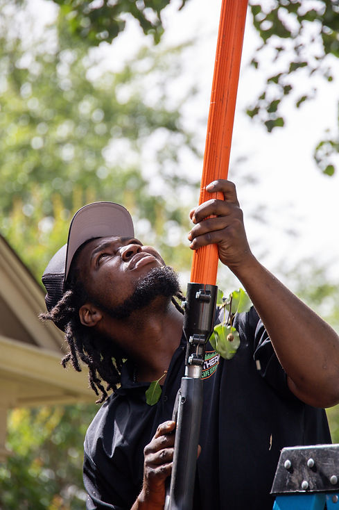 Tamarcus Sheard of Brothers Landscape Services in Euless, TX using a polesaw to do some light tree trimming in Grapevine, TX.