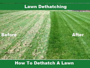 What is de-thatching and aeration?