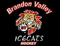 Brand Valley Hockey - New Ice Complex