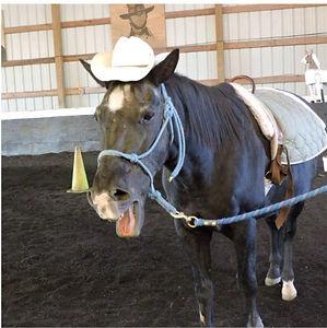 cowboy 1_edited.jpg