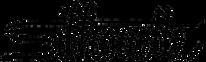 Silhouette_logo_logotype-700x210.png