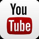 Joy Music Video | Gertraud Mayer  | Youtube