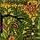 Thumbnail: Aus kleinen Leoparden werden große