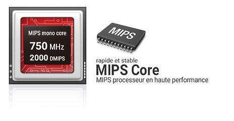mips_core_france.jpg