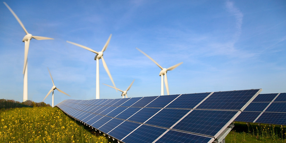 The Role of Finance in the Low-Carbon Energy Transition