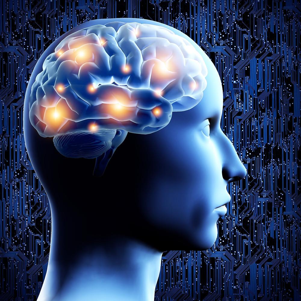 Brain - 3D illustration..jpg