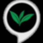 __Pure_Leaf_Tea_-__Alexa_-_skill_storei