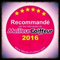 élu meilleur coiffeur du val d'Oise 2016