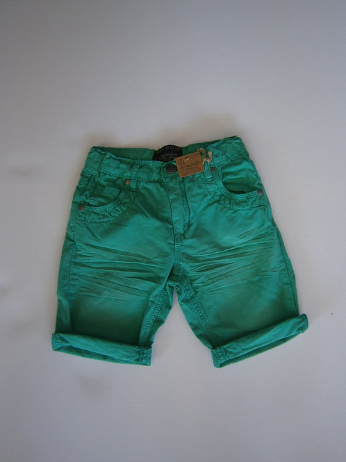 Denim Green Shorts
