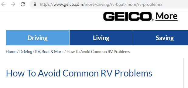 GiGi as The RV Expert on Geico BLog
