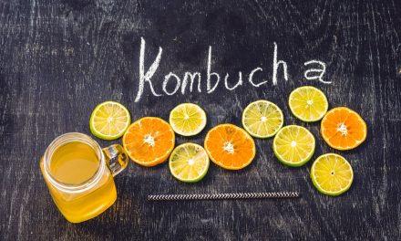 Humble Pack (8ct) Tally Kombucha