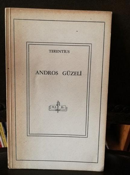 Andros Güzeli