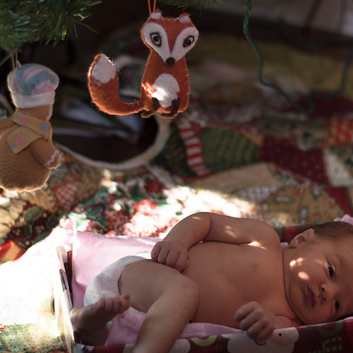 Avery Fox, Sweet Baby Girl