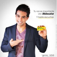 Mebocaina Advertising