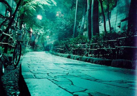 新宿の道 Shinjuku's Path